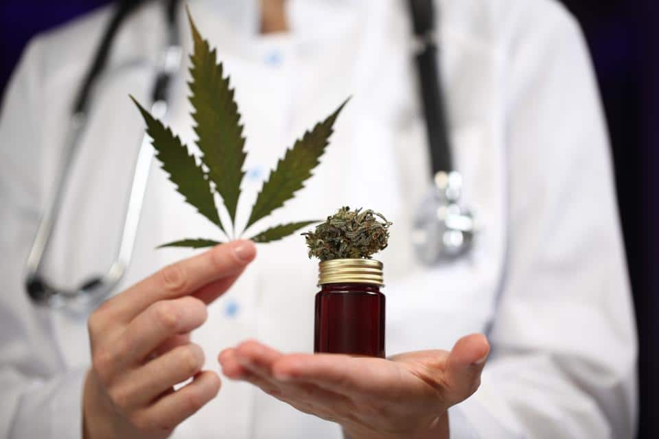 Medical marijuana in the hands of a doctor.