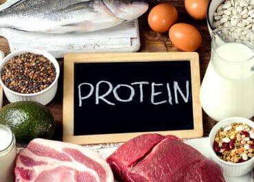 โปรตีน กับ สุขภาพ